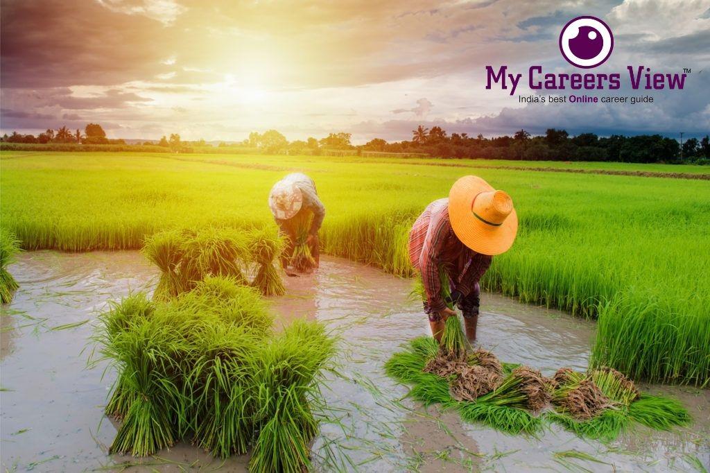 https://mycareersview.com/afile/mcv14901_bsc-agriculture.jpg