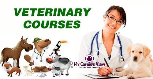 https://mycareersview.com/afile/mcv14981_Veterinary-Courses-Details(1).jpg